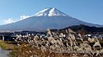 Fuji291109